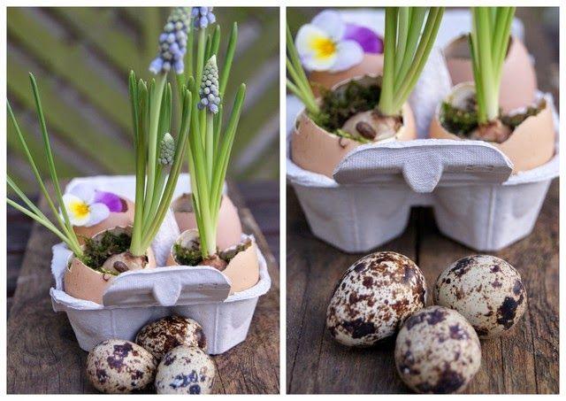 DIY: Osterdeko mit Eiervasen und Traubenhyazinthen