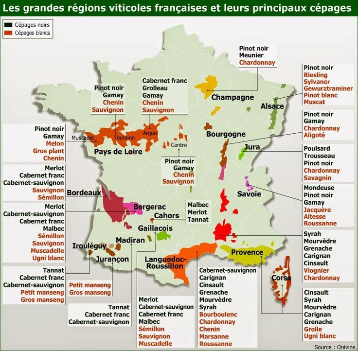 Extrêmement Les 156 meilleures images du tableau Le vin sur Pinterest | Belge  WC06