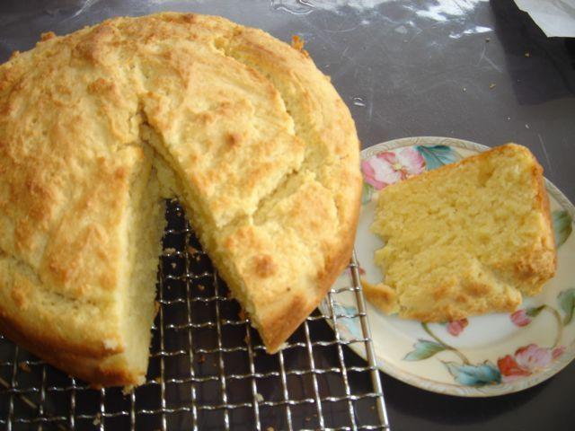 Lemon ricotta cake (with home made ricotta!)