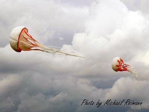 jelly fish kite!