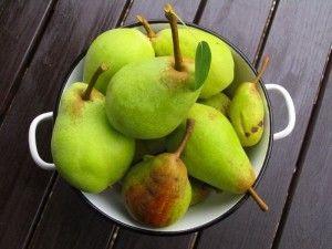 Birnensorten verzaubern mit ihrem süßen Geschmack
