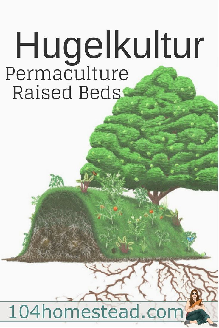 306 best taf suburban permaculture images on pinterest organic