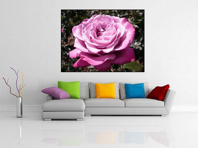 Tablou canvas trandafir roz - cod L09