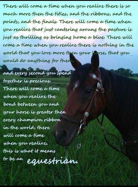 Horse Quotes Equestrian. QuotesGram