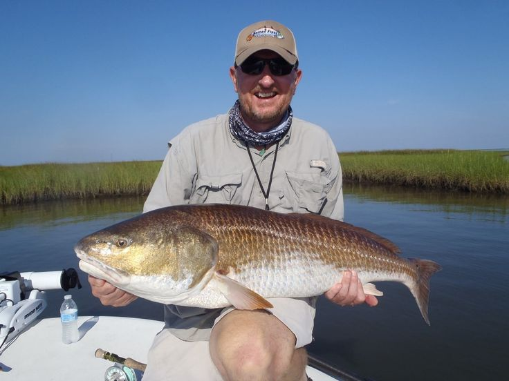 11 best images about flyfishing for redfish on pinterest for Fly fishing new orleans