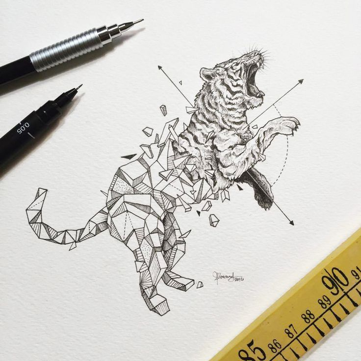 Intricate Drawings Of Wild Animals Fused With Geometric Shapes ...