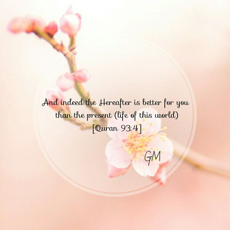 And indeed the Hereafter is better for you than this present life.
