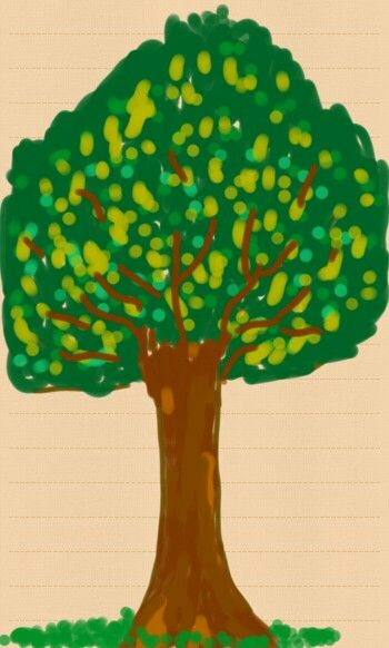 Draw a tree training