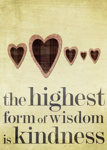 the highest form of wisdom is kindness