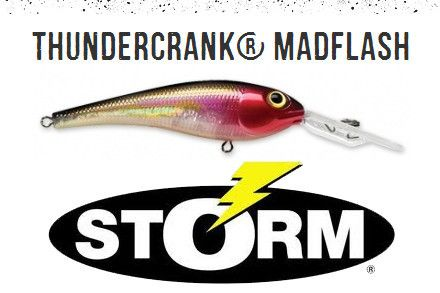 storm thunder crank mad flash   lures by storm   import tackle, Fishing Reels