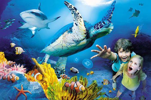 Tauchen Sie ein in ein Meer voller Farben…  – Sea Life Hannover
