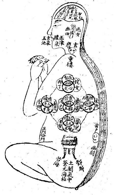 Xing Ming Gui Zhi - principiile dublei cultivari | Neidan Romania