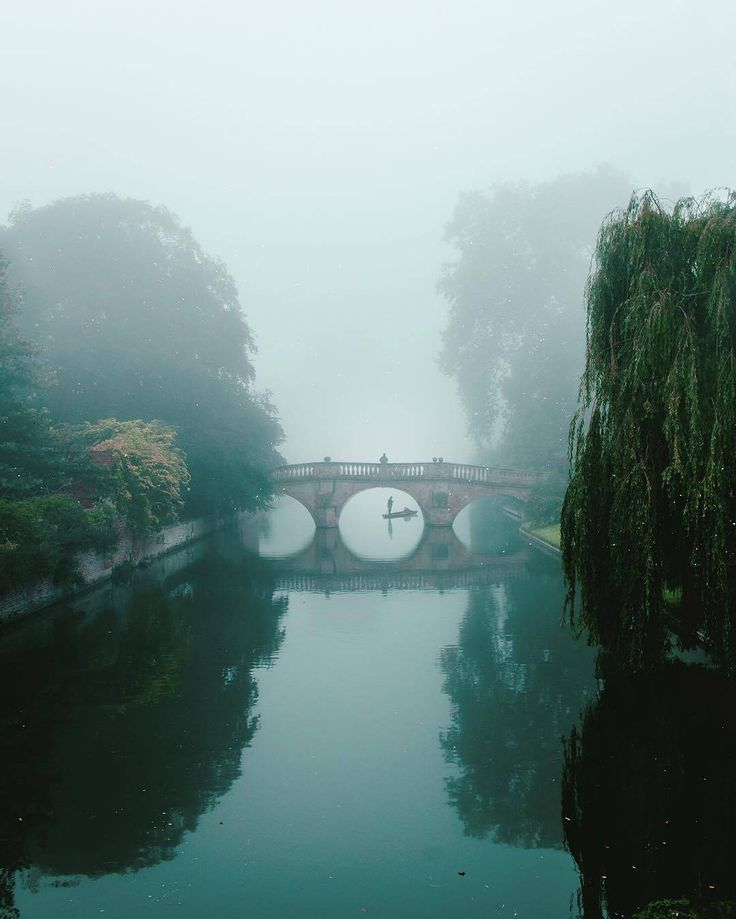 Majestic fog in Cambridge, United Kingdom by Stefanos