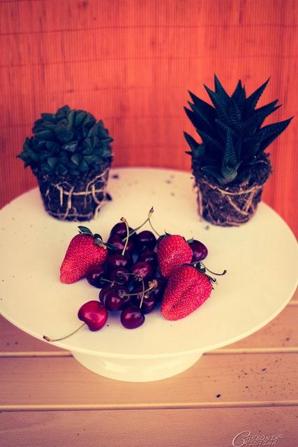 Fragole, ciliegie e piante grasse