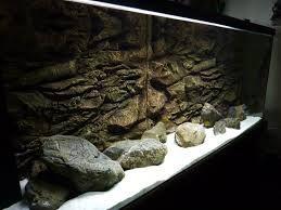 108 Best Images About Aqarium On Pinterest Aquarium Driftwood 300 Gallon Aquarium And Turtles