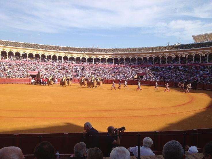 El templo de los toros en Sevilla, feria...