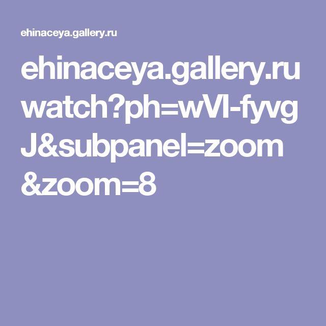 ehinaceya.gallery.ru watch?ph=wVI-fyvgJ&subpanel=zoom&zoom=8