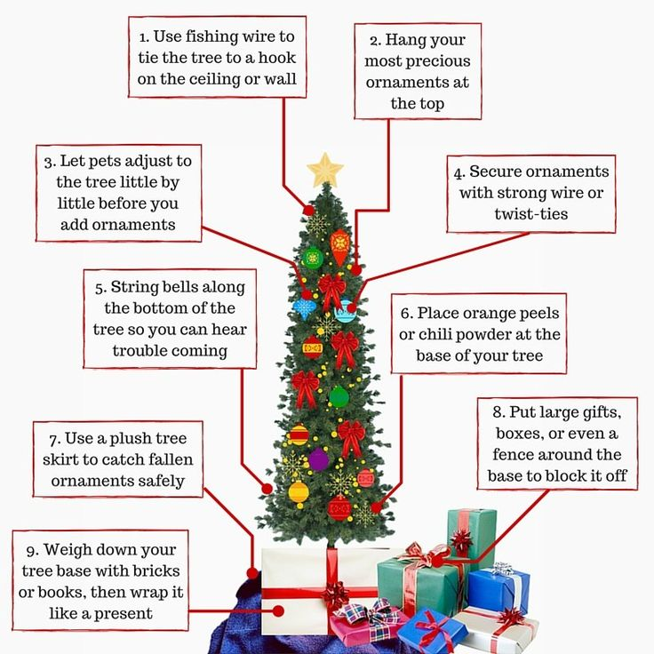 How To Keep Your Kids Pets And Christmas Tree Safe This