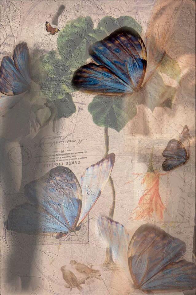 """Lady Butterfly""  A Futuras Fusion image by www.futurasfotografie.nl"