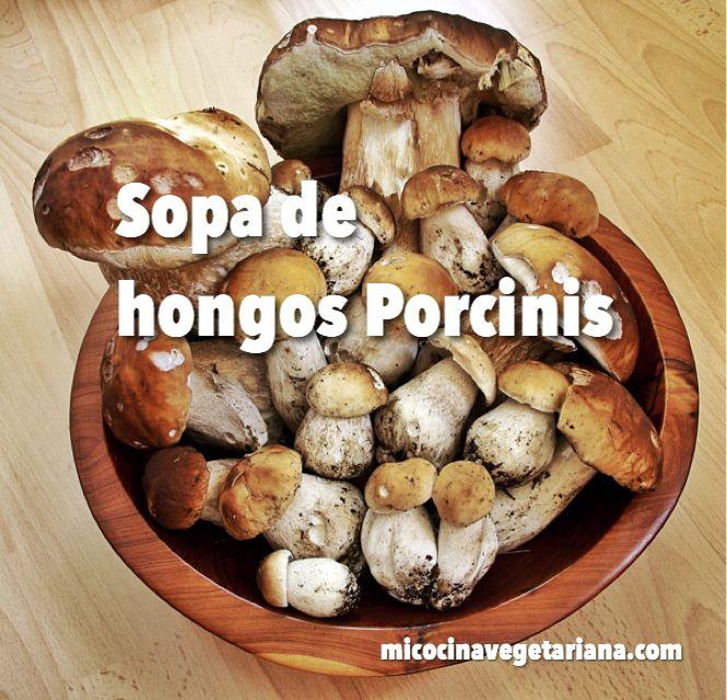 Sopa de hongos Porcini