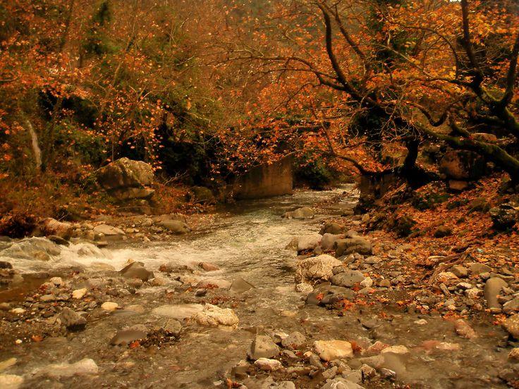 https://flic.kr/p/jEPuq6 | Arcadia - Touthoas river (3) | Touthoas river near to Phouskari and Lefkochori which is a mountain village in the municipal unit of Lagkadia in Arcadia, Greece. It is 5 km west of Lagkadia.