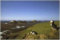 Muckle Flugga, the most northerly isles in Britain.  Shetland Islands
