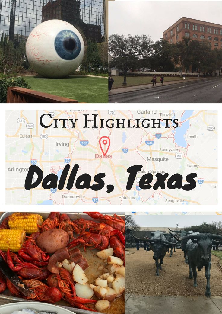 Planning a weekend getaway to Dallas? Here are some great Dallas City Highlights to plan the perfect trip to this cool Texas city!