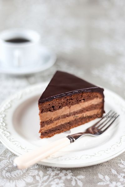 Chocolate Sponge Cake With Prague Buttercream