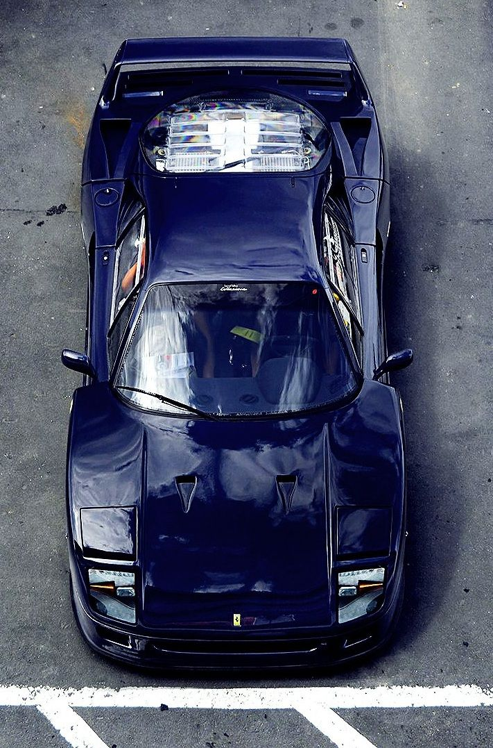 Ferrari F40 #car #blue