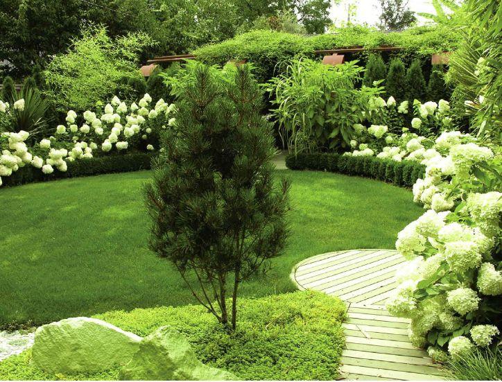Gorgeous Garden With Hydrangeas Garden Goodness