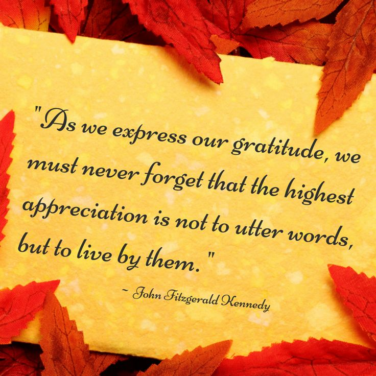 """""""As we express our gratitude, we must never forget that the highest appreciation is not to utter words, but to live by them."""" - John F. Kennedy ... Happy Thanksgiving to you and your loved ones. May today be filled with love, reflection, and gratitude. ~ Alison"""