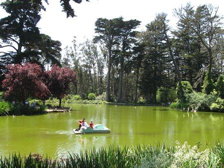 (A relaxing afternoon with a picnic sounds nice) Golden Gate Park Lake