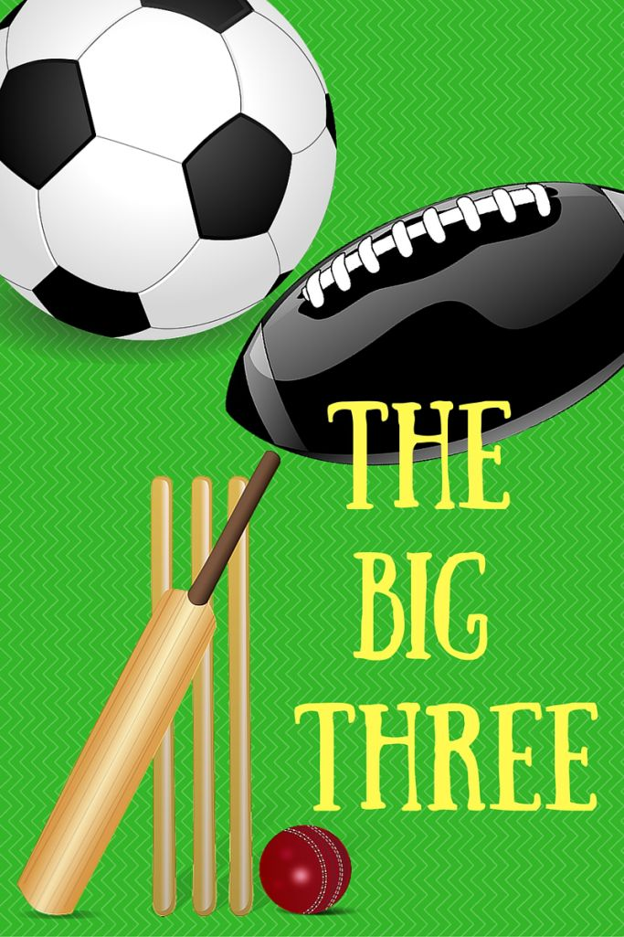 The Big 3 Sports In South Africa Globe Trottin Kids Africa South Africa Sports Theme
