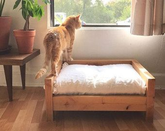 Medium Dog Bed  Raised Dog Bed  Elevated Dog Bed  Wooden