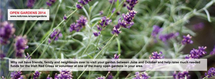 You could help raise much need funds by opening your garden to the public; or volunteer at one of the many open gardens in your area.
