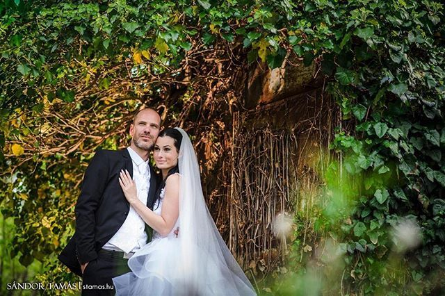 #wedding #weddingphoto #stamasponthu #weddingcreative #esküvő #esküvőfotózás #esküvőfotós