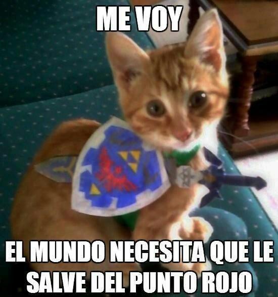 memes de gatos chistosos - Google Search