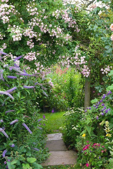 Create winding pathways and massed plantings to add interest to your garden. A straight, bare garden is boring ! #FlowerGarden