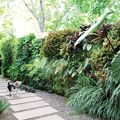 Vertical garden wall projects