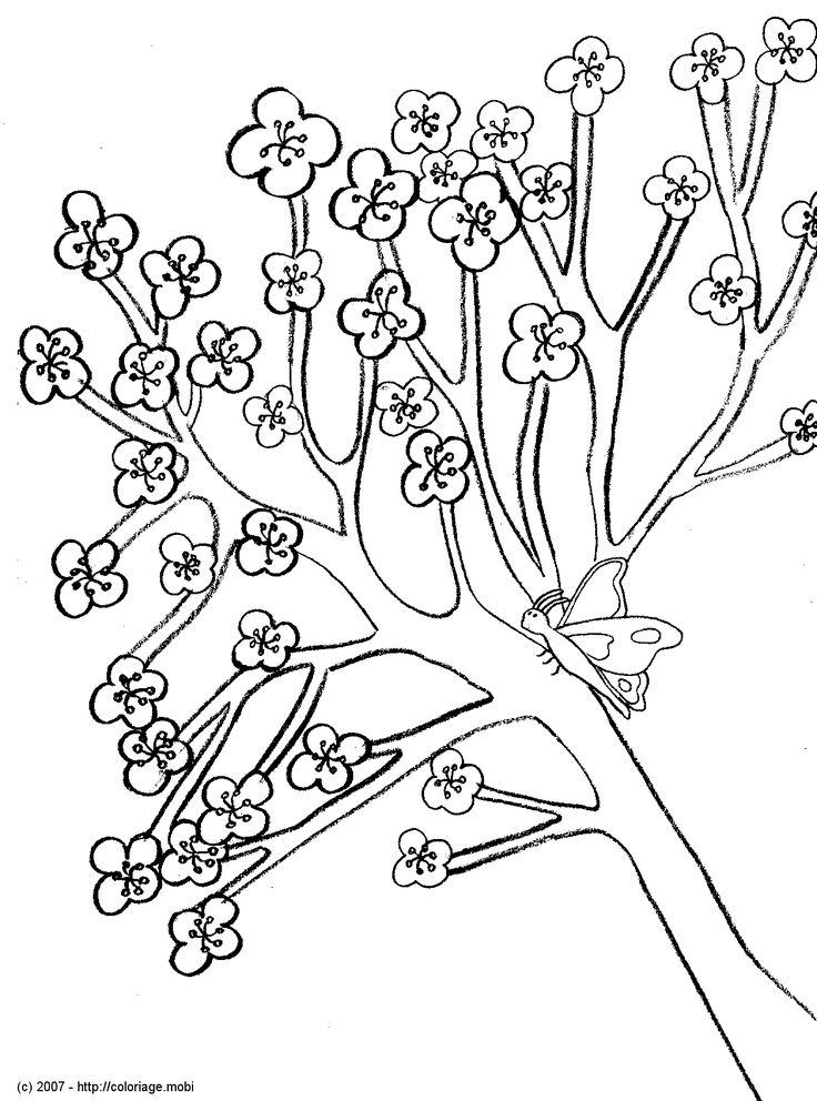 Les 27 meilleures images du tableau coloriages sakura sur pinterest coloriages card captor - Dessin arbre japonais ...