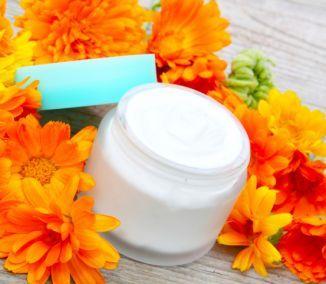 Nechtíková masť pomáha pri liečbe kŕčových žíl, chrastavosti v nose, liečbe drobných raniek, jaziev aj hnisavých vriedkov