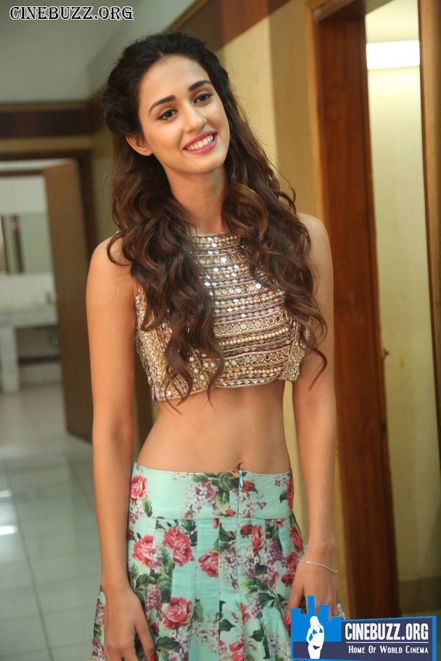 Disha Patani New Hot Photos
