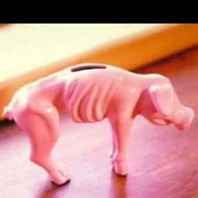 Today's  piggy-bankLaugh, Gas Price, Piggies Banks, So True, Funny Stuff, Humor, Things, True Stories, Poor Piggies