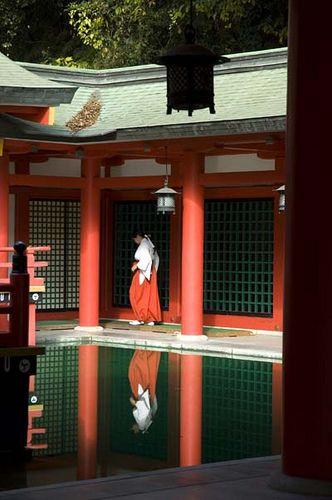 Akama-jingu shrine #japan #yamaguchi