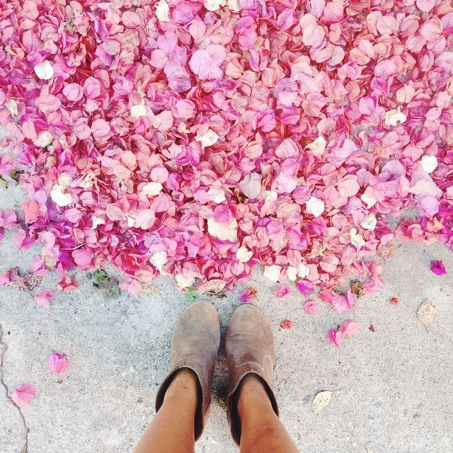 Follow us on our Instagram @DameTraveler and hashtag #DameTraveler to be…
