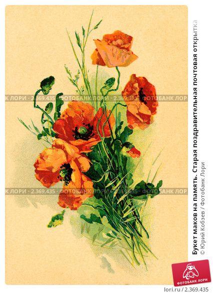 Букет маков на память. Старая поздравительная почтовая открытка, фото № 2369435, снято 7 июля 2017 г. (c) Юрий Кобзев / Фотобанк Лори