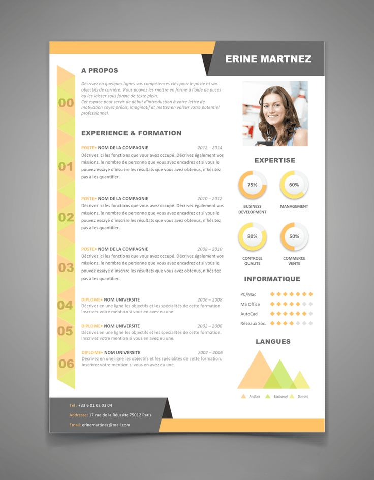 cv graphistes exemples