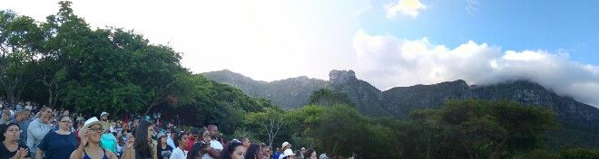 Kirstenbosch botanical gardens summer concerts