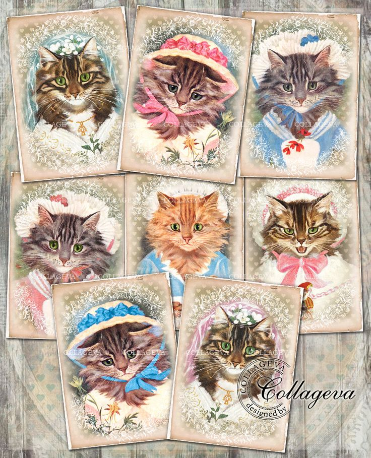 Cat Ladies 2, Bride Maid, Cute Kitten Kitty She-cat Female Feline, Distressed Heart Background Vintage Cards Digital Tags ACEO ATC (T008-a) by collageva on Etsy