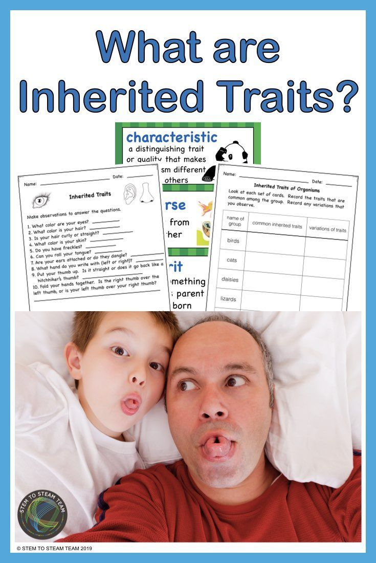 What Are Inherited Traits In 2020 Inherited Traits Inherited Traits Activity Science Lessons